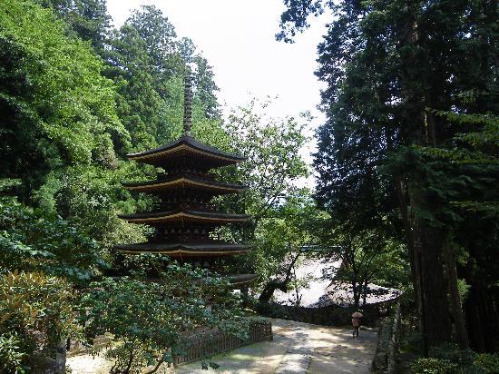 Uda, Japan: 仏像を見るならここまで。