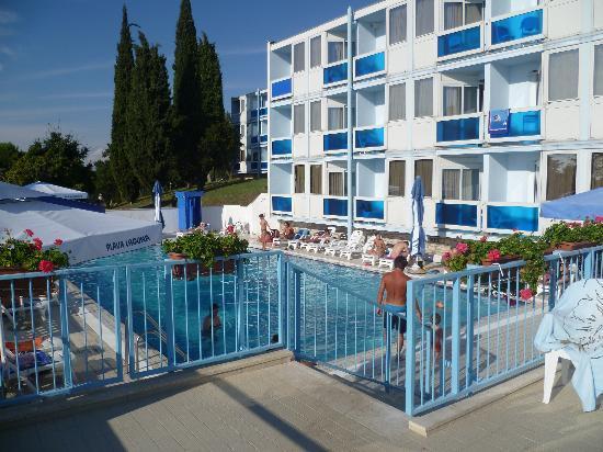 Hotel Plavi: piscina
