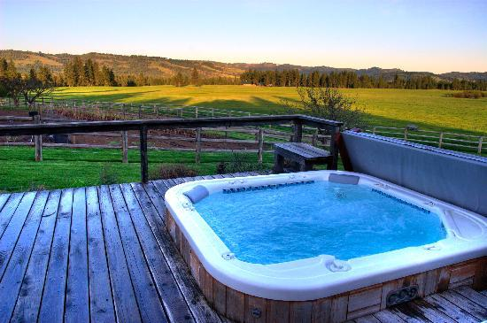 Council, ID: Relax in a hot tub after a day of activities and enjoy the spectacular views