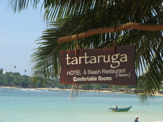 Tartaruga Hotel & Beach Restaurant: From beach side