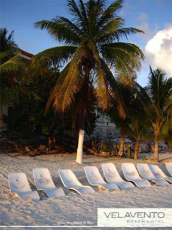 Velavento Beach Hotel: Sunbeds