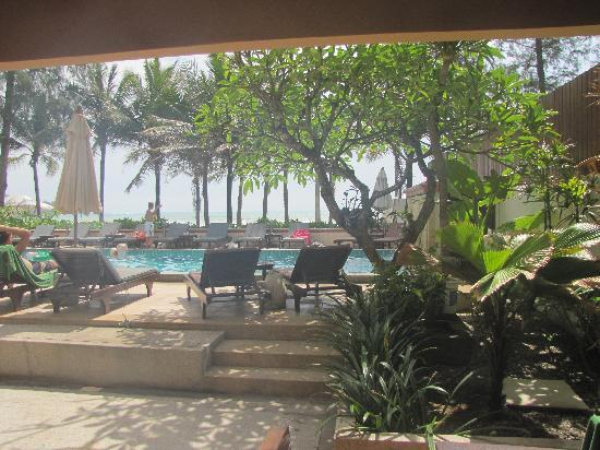 Kamala Beachfront Apartment: proximity from pool/beach