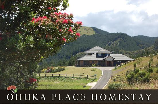 Ohuka Place Homestay: View of Ohuka Place from the driveway