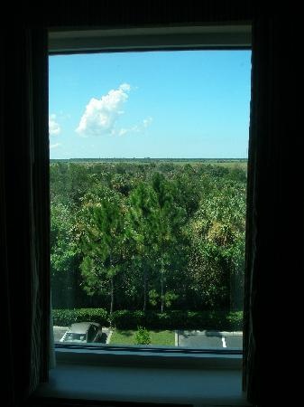 Hampton Inn Titusville / I-95 Kennedy Space Center: the view