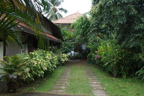 Motty's Homestay: Garden