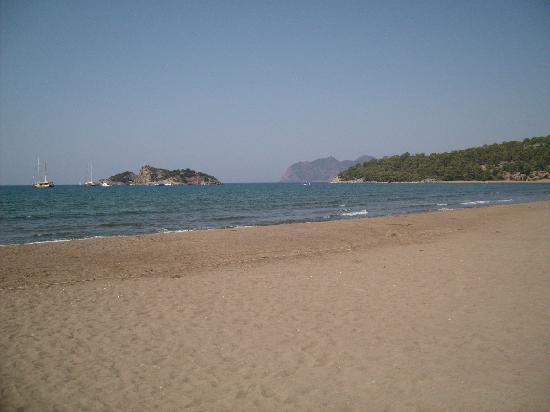Fatih Apart Hotel: Turtle beach at approx 11am.