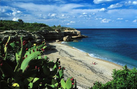 L'Ametlla de Mar, Spain: Cala Xelín