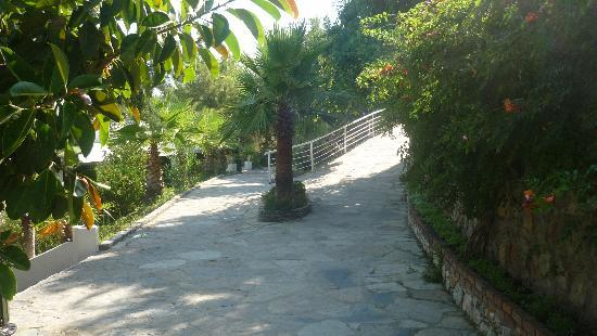 Blue Dreams Resort: Pathway