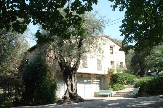 Musee Renoir/Les Collettes
