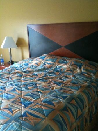 Sleep Inn & Suites : king room