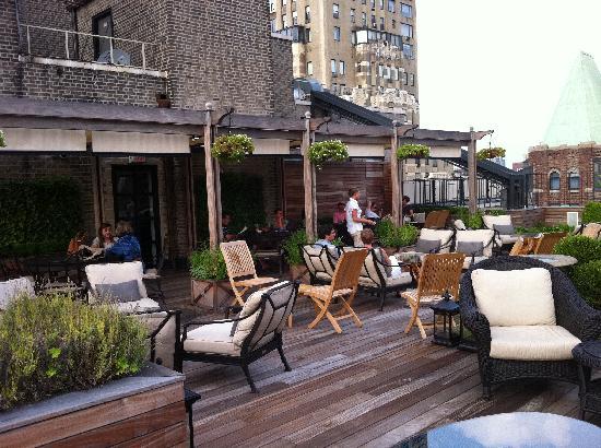 Surrey Hotel Ny Reviews