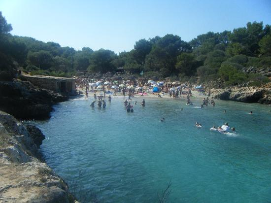 Beach At Cala Sa Nau 1