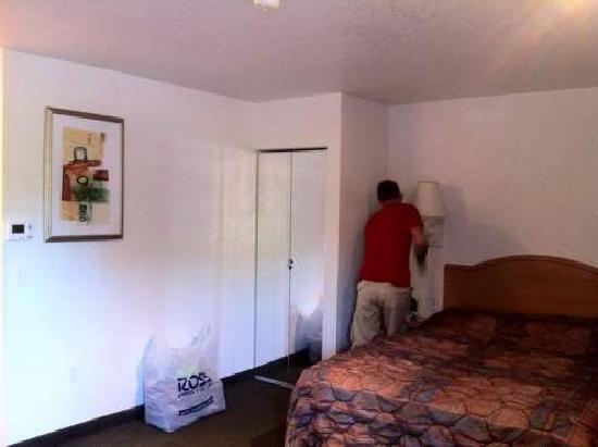 Studio 6 Orlando - Kissimmee: cama