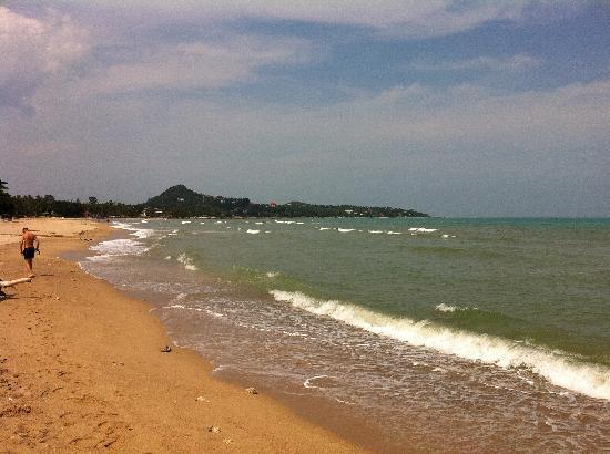 Zara Beach Resort: Lamai beach