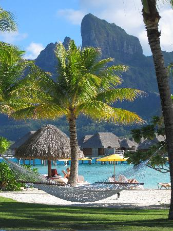 Four Seasons Resort Bora Bora: ハンモック