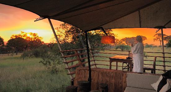 Serengeti Bushtops Camp: Sunset