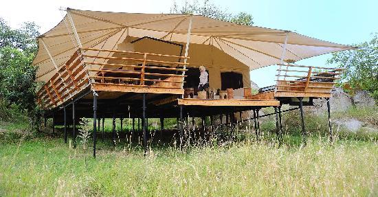 写真Serengeti Bushtops Camp枚