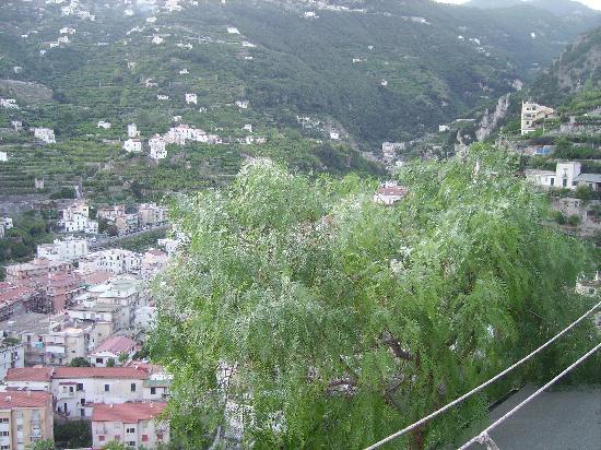 Bed and breakfast Villa Marietta: albero del pepe