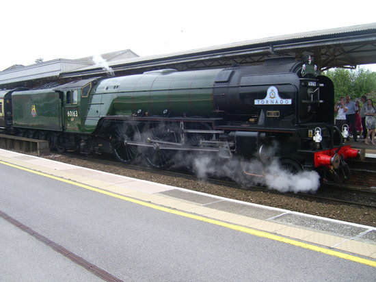 Torbay Express Limited