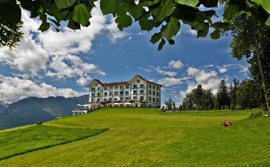 Hotel Villa Honegg : Traumlage!