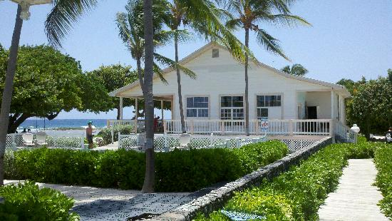Hungry Iguana Restaurant: Hungry Iguanan, Little Cayman by Paradise Villa Pool