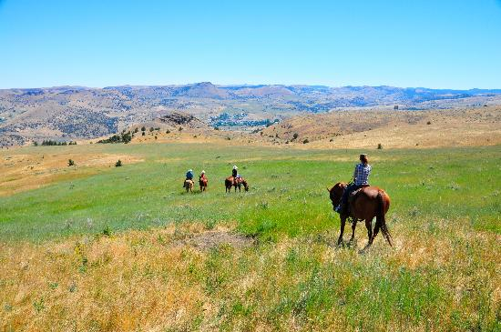 Wilson Ranches Retreat Bed & Breakfast: Horseback riding over Fossil, OR