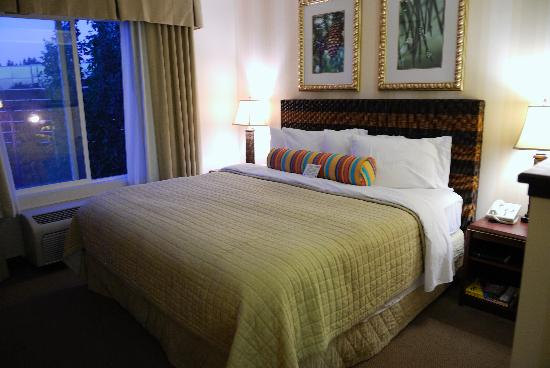 DoubleTree by Hilton Hotel Vancouver, Washington: The King sized bed