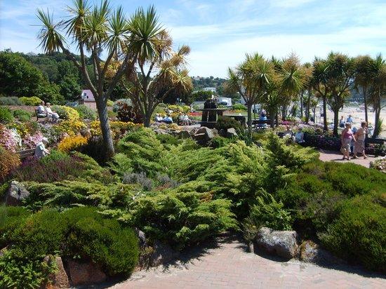 St. Brelade's Bay Beach: Greenery