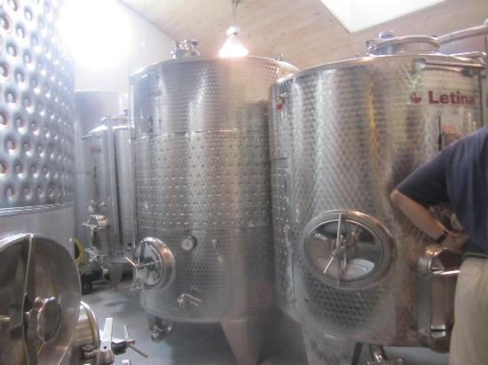 Nashoba Valley Winery: wine is fermenting inside