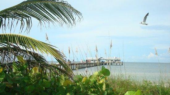 City Pier Restaurant: City Pier & Restaurant