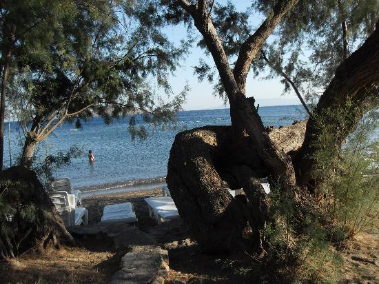 Club Muskebi: La plage
