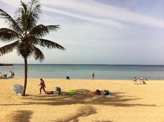 Occidental Lanzarote Mar: Beautiful Arrecife beach