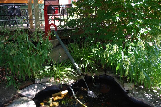 The Laughing Boar Guest House: Fish pond off big deck shaded by trees