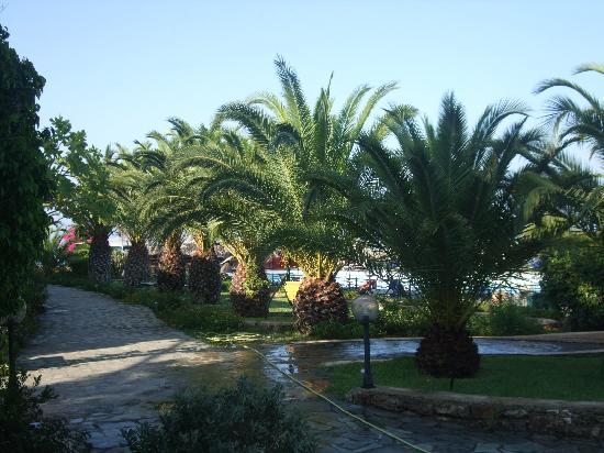 San Lorenzo Village: pool area