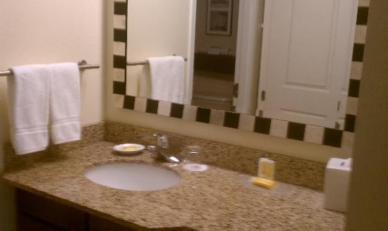 Residence Inn Dulles Airport at Dulles 28 Centre: Bathroom