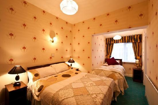 Claddagh B&B Waterford: Double Room