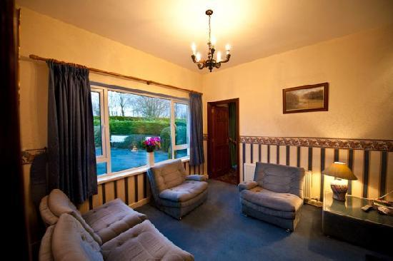 Claddagh B&B Waterford: Guests Lounge