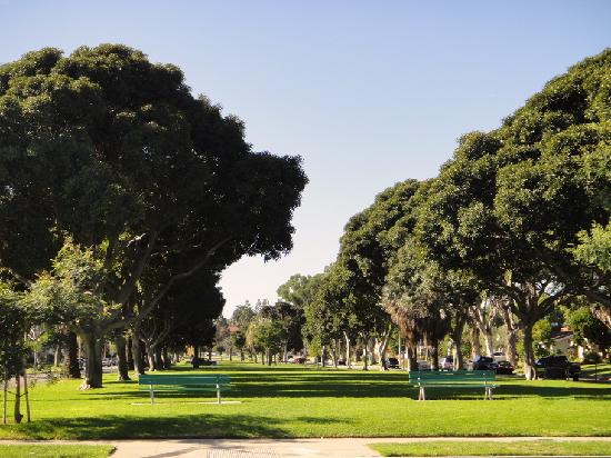 There are over 30 Torrance Parks