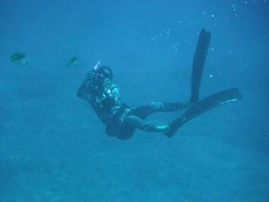 Quicksilver Maui Snorkeling Charters: Our videographer
