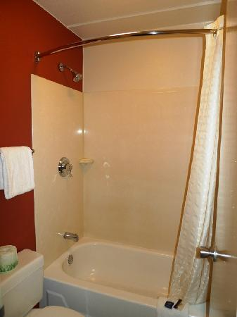 Red Roof Inn Greensboro Coliseum : Bathroom