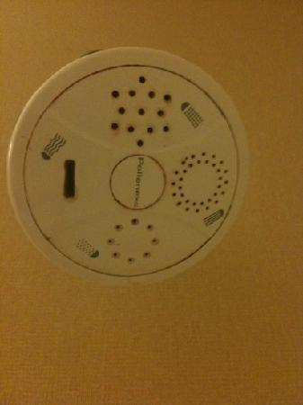 Best Western Jamaica Inn: nasty showerhead with mold