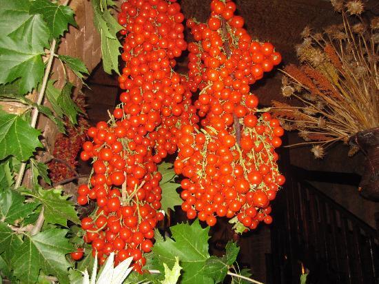 Taverna dello Spuntino: The tomatoes...wow!