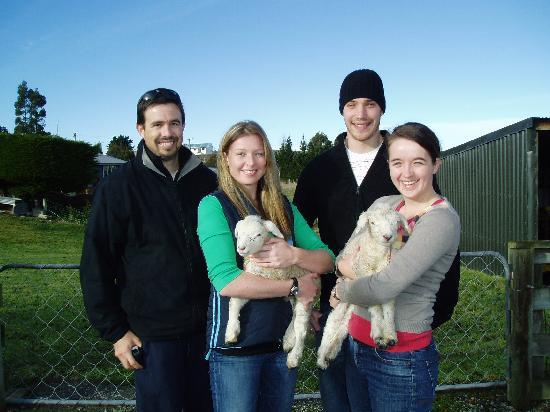 Wentworth Heights Bed and Breakfast: Guests with the pet lambs
