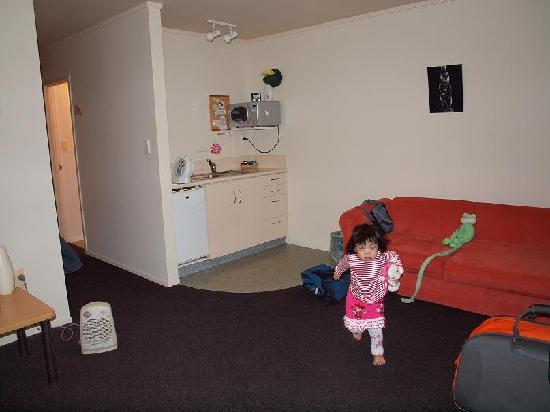 Ann's Volcanic Rotorua Motel and Serviced Apartments : Part of the living area.