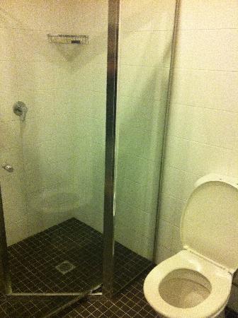 Vulcan Hotel: glass door shower