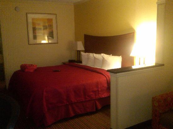 Quality Inn & Suites Civic Center: Bed