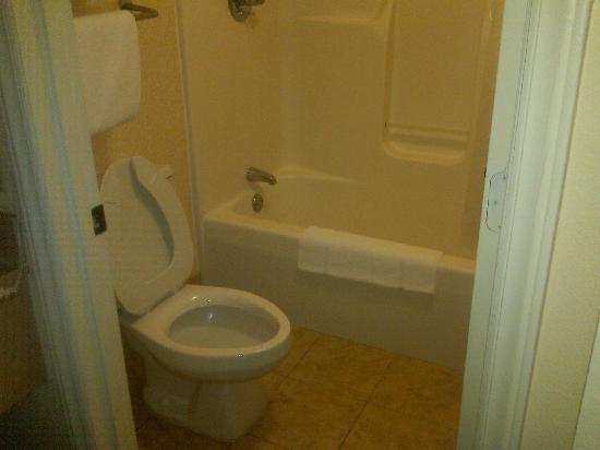 Quality Inn & Suites Civic Center: Bathroom
