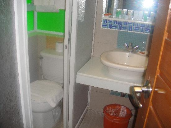 Acuatico Beach Resort & Hotel: toilet on some villa room