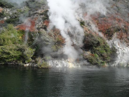 Waimangu Volcanic Valley : Active steam viewed from boat