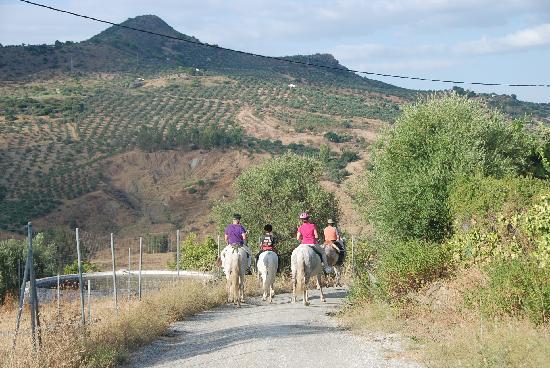 El Molino Santisteban: Paardrijden door de heuvels van Spanje